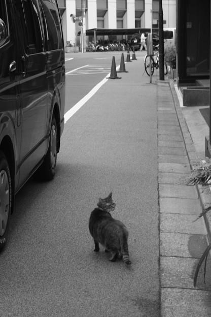 Photos: 2010-06-11-16.58.50