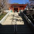 Photos: 110131-96高尾山・薬王院・仁王門