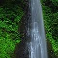 Photos: 緑が美しい雨滝