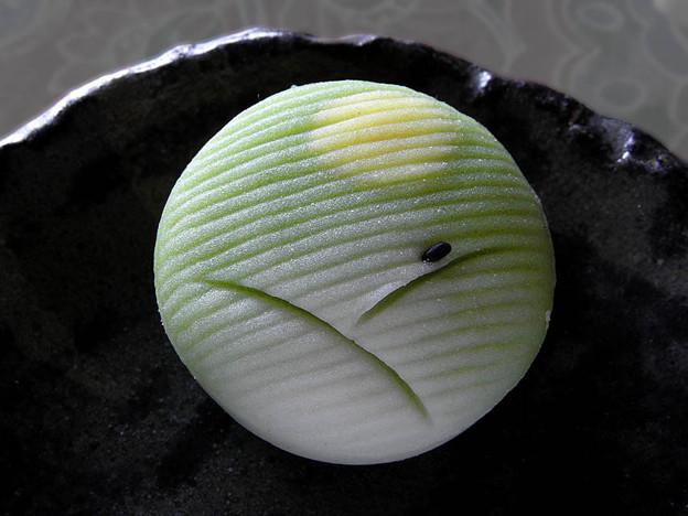 写真: 月見   笹屋 ( 笹屋菓子舗 和菓子 根津 )