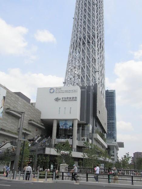 東京スカイツリー 根本はこんな感じ