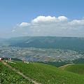 写真: 新緑の大観峰(5)
