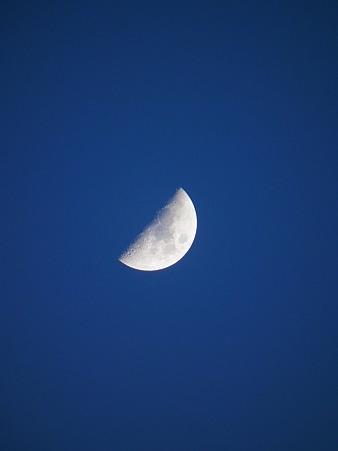 よい月です