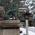 尾山神社 狛犬と神門