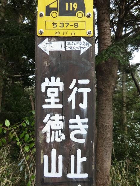 →堂徳山(行き止まり)