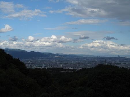 20101010 甲山森林公園036
