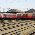 Photos: 小湊鉄道 キハ200形